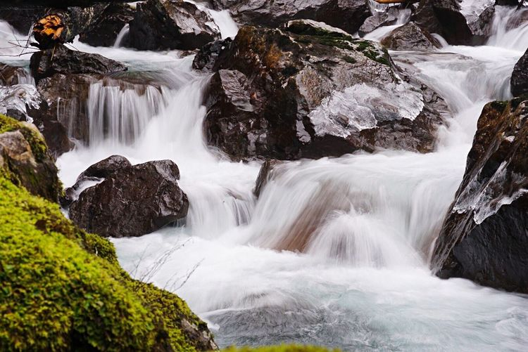 Rush Water Waterfall Scenics - Nature Beauty In Nature Motion Rock Rock - Object Flowing Water Long Exposure Environment Land Power In Nature Travel Destinations Flowing Solid Power Tree No People Nature Forest