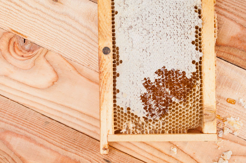 Directly above shot of beehive on wooden table