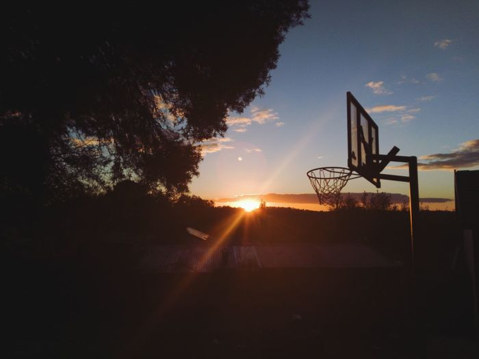 backyard sunset Trees Trees And Sky Sunset Backyard Backyard Sunset Shed Shed Roof Garage Tree Line Sunrays Sunset_collection Sunset Silhouettes Sunsetlover Basketball - Sport Tree Basketball Hoop Sport Sunset Silhouette Net - Sports Equipment Sunlight Goal Post Basketball Outdoor Play Equipment