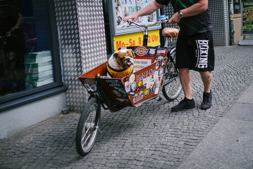 Berlin Bicycle Capture Berlin City City Life Day Deutschland Dog Germany Outdoors Pets Sidewalk Street Transportation Wagon