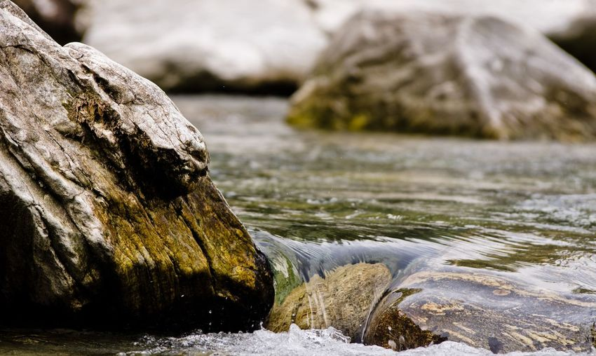 Close-up of rock by river
