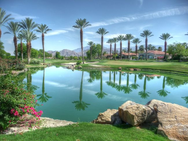 Beautiful golf vistas Beauty In Nature Country Club Day Golf Golfcourse Nature Reflection Resort Sand Trap Scenics Tranquil Scene Tranquility Tree Vacation Water