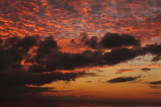 EyeEm Best Shots Sky Clouds And Sky Sunshine Sea Clouds