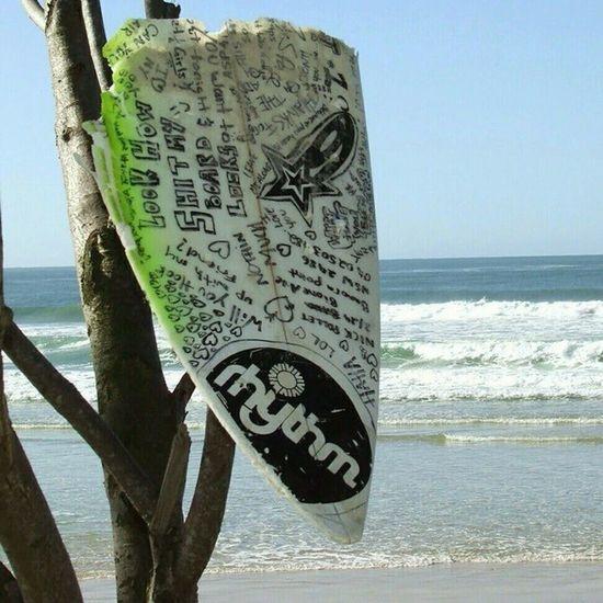 My favourite surfing statement pic. Coolyrockson Cars Custom GoldCoast Kirra Coolangatta Holiday Vacation Beach Surf Ilovegoldcoast Southerngoldcoast Forgottenparadise Petes2506 Art Nikon Photography Surfing Beach Skydive Surfing Photo link: http://bit.ly/1z4JNb8 -- via http://bit.ly/picasa_tool