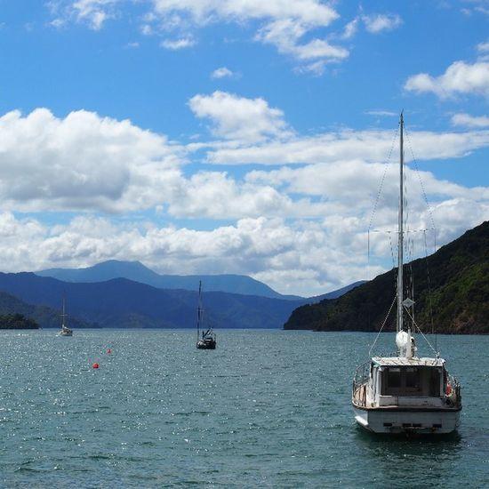 Picton, New Zealand Explorenz Newzealand Picton  Southisland Cloudporn Clouds Wanderlust Travel Travelgram Roadtrip
