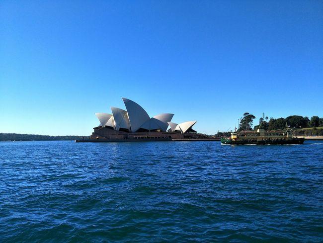 Sydney Opera House Water Clear Sky