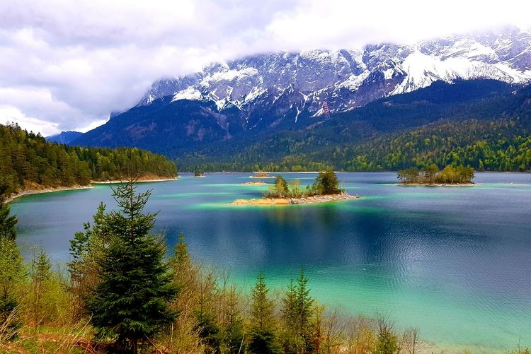 Tree Snow Lake