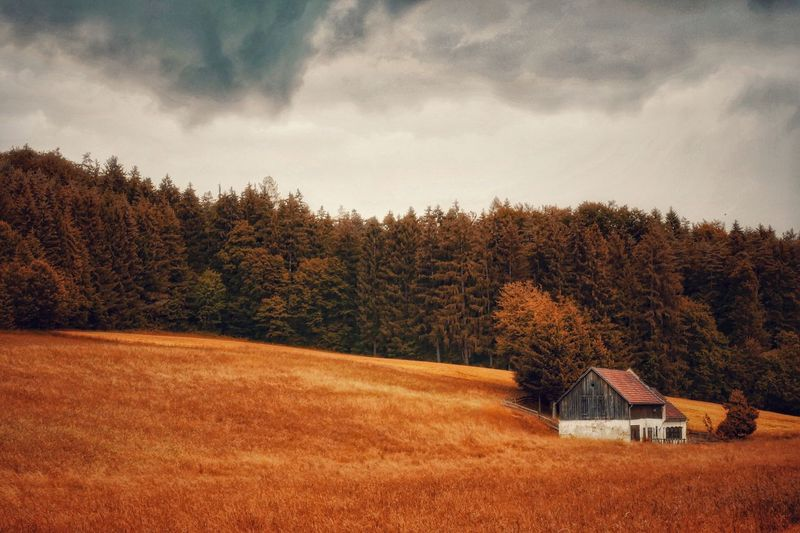 Tree Nature Sky No People Cloud - Sky Architecture House Building Exterior Beauty In Nature Scenics Tranquil Scene Landscape Countryside Melancholic Landscapes A Photo Like A Painting Austria Landscape_photography Vienna Alps Autumn WoodLand Farm Farmhouse