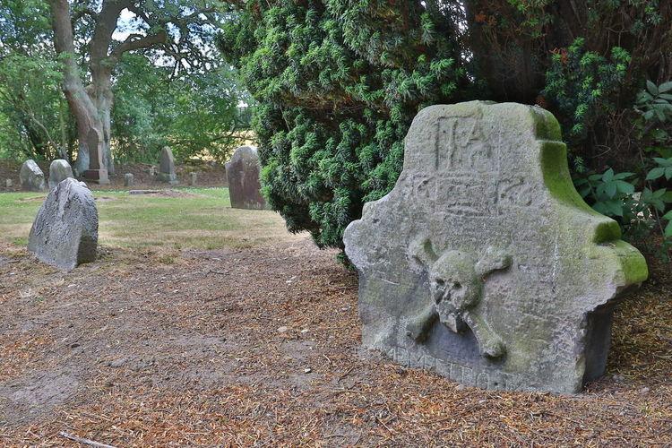 Stone sculpture in park