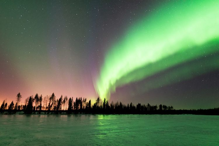 Bright auroras over the field Beauty In Nature Sky Scenics - Nature Night Green Color Tranquility Tranquil Scene Star - Space Astronomy No People Nature Natural Phenomenon Majestic Aurora Polaris Landscape Scenics Photography Nature_collection Travel Freshness Field Clear Sky Outdoors Lapland Northern Lights