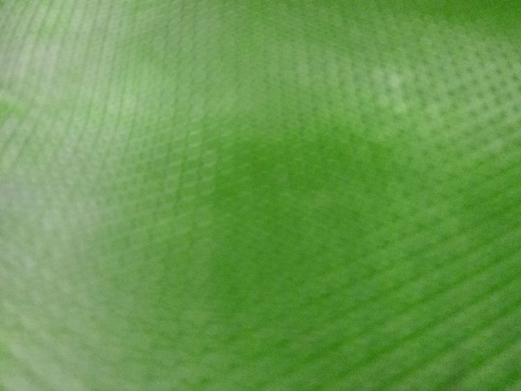 Green Color Backgrounds Extreme Close-up Macro Textured  Brightly Lit Vibrant Color Studio Shot Empty No People Abstract Full Frame Nature Close-up