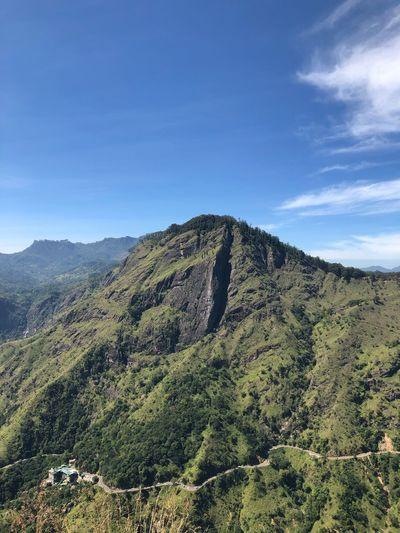 Ella Rock Sri Lanka SriLanka Traveling Ellarock Scenics - Nature Beauty In Nature Tranquility Tranquil Scene Landscape Growth Nature Mountain Green Color No People