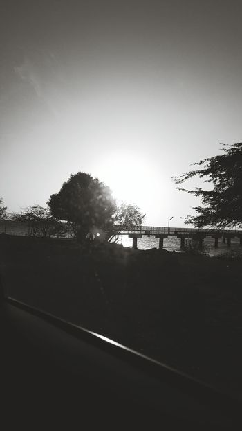 Photography Is My Escape From Reality! The Light Light Up Ur Life Oceanview Blackandwhite Sun ☀ Sunshine