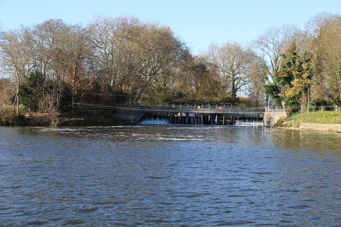 Thames Architecture Bare Tree Beauty In Nature Built Structure Clear Sky Day Nature No People Outdoors River Riverbank Scenics Shepperton Sky Tranquility Tree Water Waterfront Weir