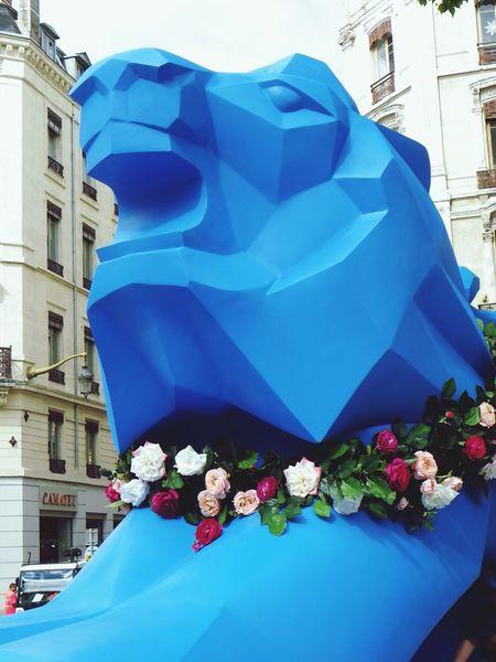 Lyon : Only Lyon Rue de la République pour la fête de la Rose