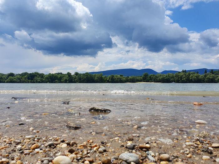 Pebbles Danube