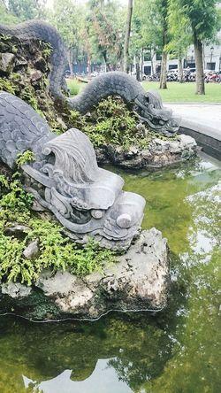 Hanoi Dragon Status Www.keovang.com