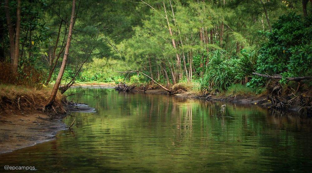 Anawangin Zambales, Philippines. Anawangin Anawangin Cove Zambales Philippines Eyeem Philippines Travel Traveling River Summertime Beachlife