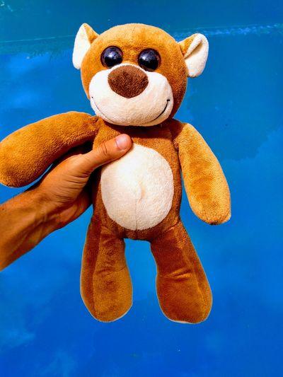 Uma bela infância Human Hand Stuffed Toy Teddy Bear Toy Sky Close-up