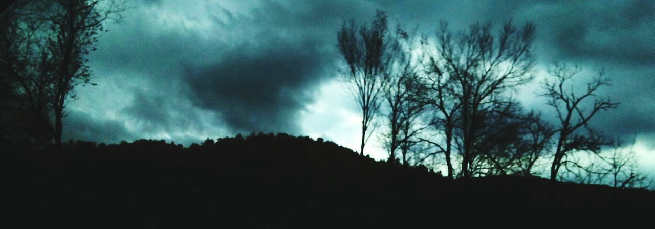 Tree Sky Cloud - Sky Outdoors Nature Spooky Beauty In Nature Tranquility Storm Cloud Storm