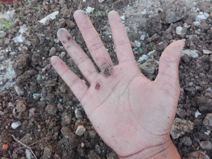 Human Body Part Outdoors Close-up People Human Hand Nature Skin Peeling Soil Leaf Real People Dirty