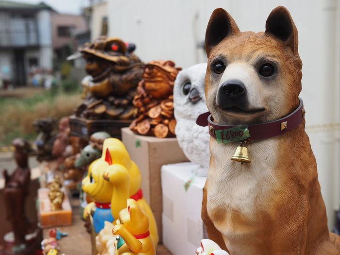 冬の風物詩【ボロ市】にて! Taking Photos Taking Pictures Streetphotography Streetphoto_color Figurine  Pets Animal Domestic Animals No People