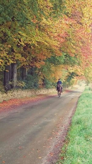 Hanging Out Check This Out Hi! Enjoying Life EyeEm Best Shots - Nature EyeEm Best Shots - People + Portrait Beautiful Nature EyeEm Nature Lover Horseriding Outdoors Outdoor Photography Out And About Autumn Colors Autumn🍁🍁🍁 Autumn 2015 Colours Of Autumn Nature