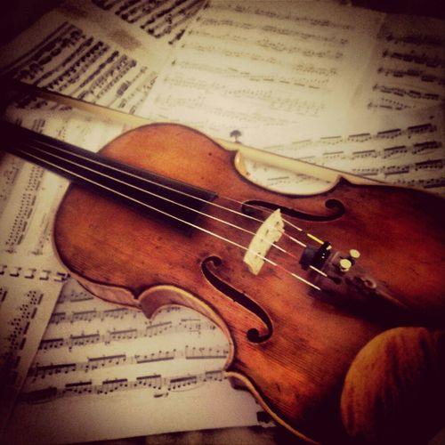 My violin . . . Me And My Violin