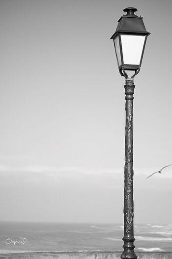 Liberté EyeEm Selects Lighting Equipment Sea Street Light Horizon Over Water No People Sky