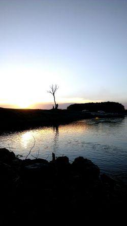 Meriç Lake Lake View Sun Sunrise Tree Turkey Edirne Enjoying Life Natural