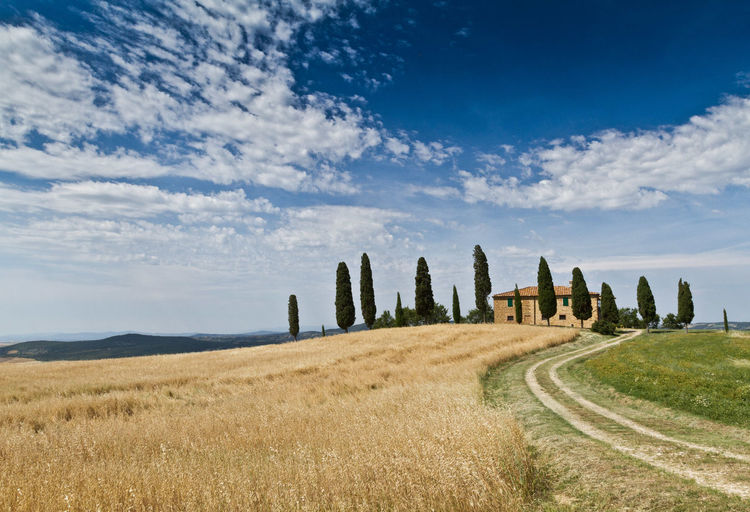 Toscana Tuscany Ancient Ancient Civilization Architecture Beauty In Nature Built Structure Cloud - Sky Day Field Grass History Italianlandscape Landscape Landscape_photography Nature No People Old Ruin Outdoors Scenics Siena Siena Italy Sky Toscana ıtaly Val D'orcia