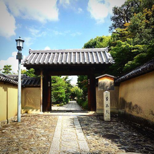 芳春院 大徳寺 大徳寺塔頭 京都 Kyoto Kyotojapan Enjoying Life Relaxing