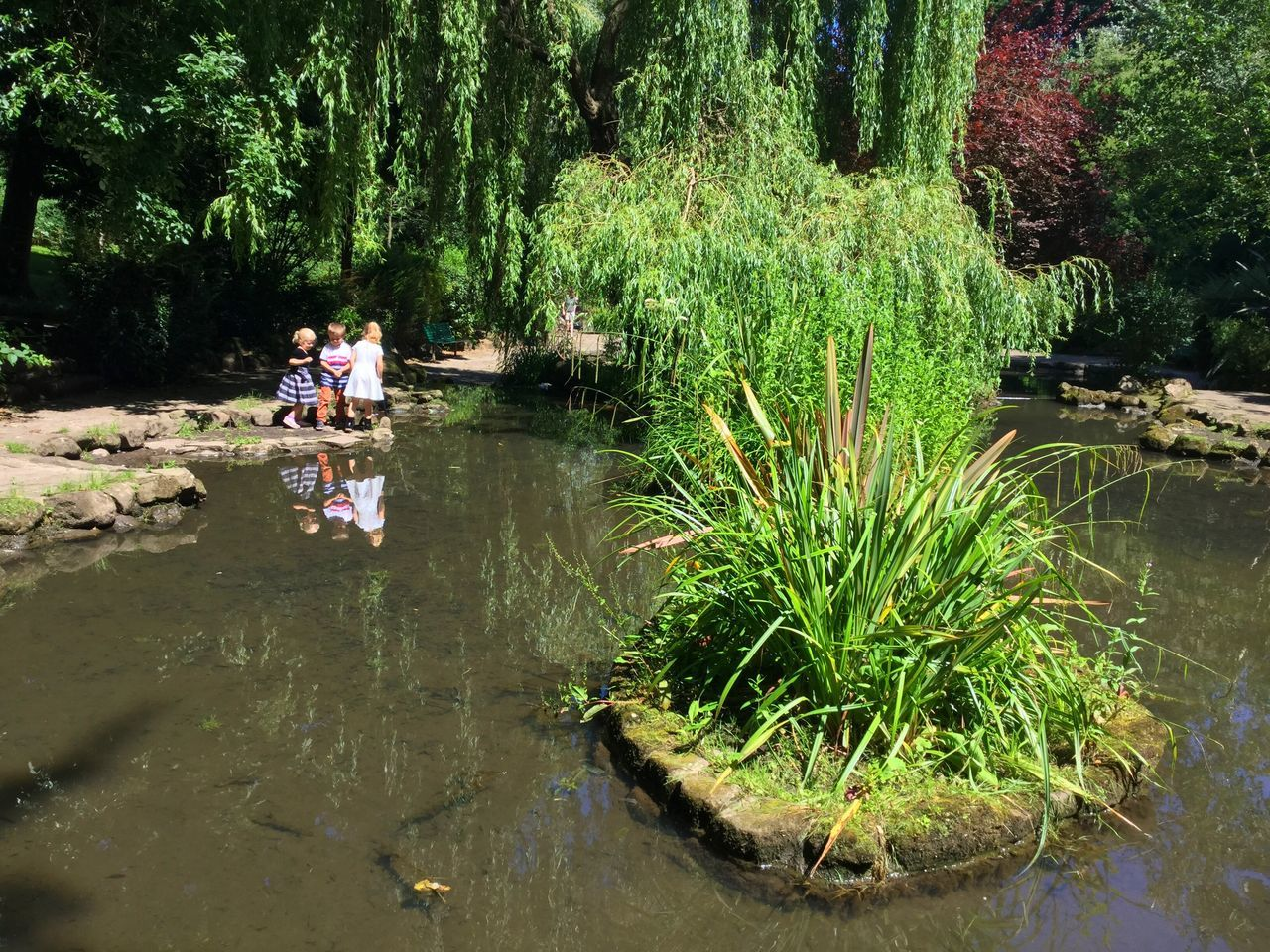 water, real people, reflection, tree, plant, river, nature, outdoors, rock - object, growth, two people, men, day, waterfront, leisure activity, standing, full length, women, beauty in nature, grass, adult, people