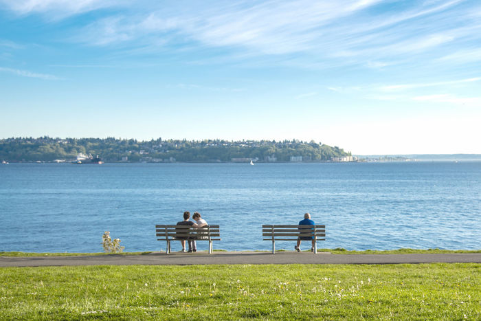 Two park benches at a seaside park, one with a couple and one with a lonely single man.. Alone Awareness Benches Couples Dating Dogs Exercise Fitness Grass Green Mental Health  Park Relationships Running Seaside Seattle Silhouette Single Spring Summer Sunburst Sunny Tourism Travel Trees