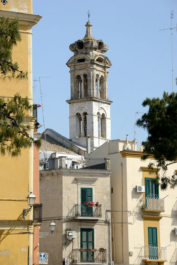 close up Bari old town cityscape with bell tower and some buildings Building Exterior Architecture Sky Religion Low Angle View Tower Belief Built Structure Place Of Worship Spirituality No People Clear Sky Plant Tree Outdoors Tower Bell Church Close-up Bari Travel Destinations Day Cityscape