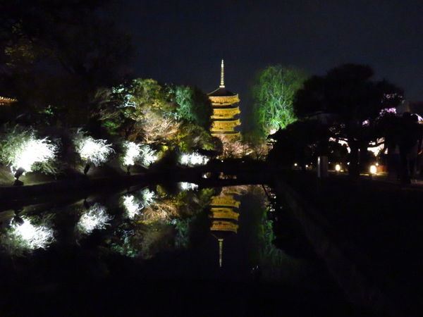 Reflection Night No People Gold Colored Illuminated Outdoors Travel Tree Five-storied Pagoda Temple Toji Temple Kyoto, Japan The Secret Spaces