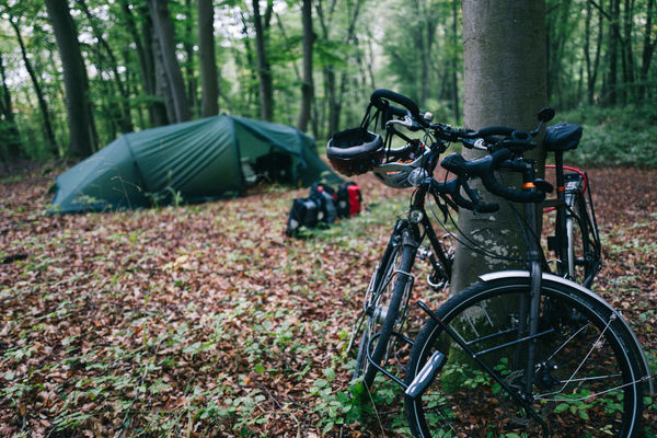 Bicycle Bikes Forest Lock Nature No People Outdoors Sleeping Tent Tree Tree Trunk