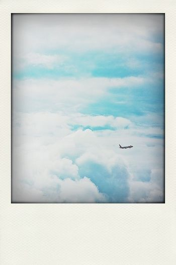 Fly away from here...