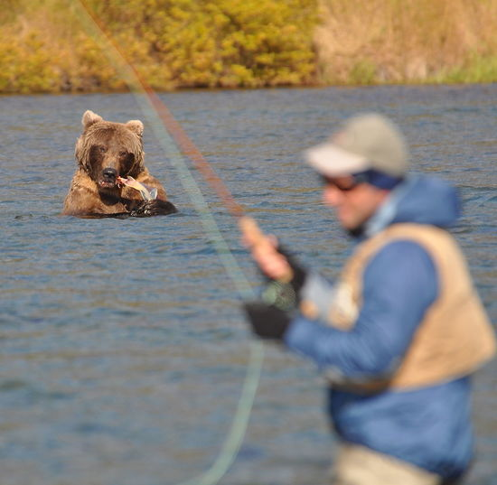 Man Fishing On Lake With Bear In Background