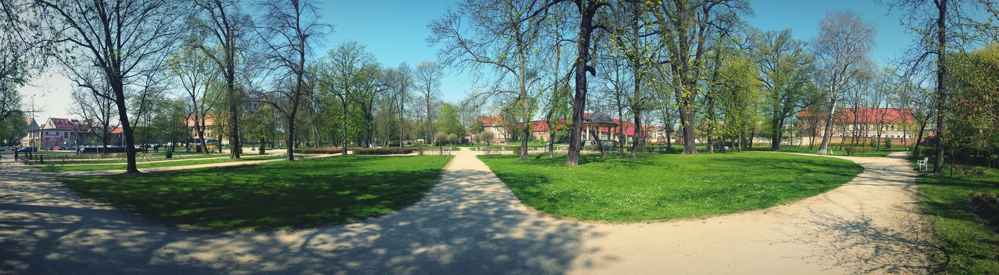 Smartphonephotography Park Panoramic Nature Colors Beautiful Nature Nature Spring Landscape Zary Hugging A Tree