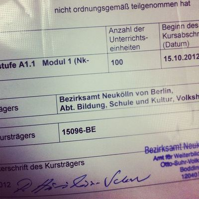 Guess who passed Deutsch level A 1.1 with a 100%! THIS GUY!