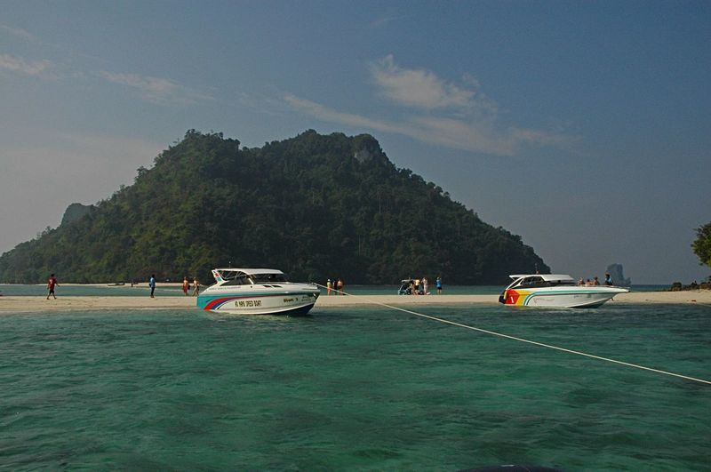 Speedboats moored at shore against sky