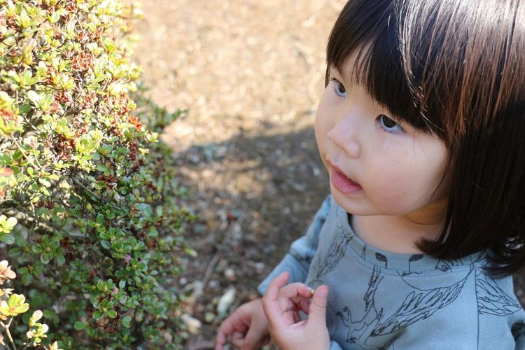 ちっちゃい実が気になるようです EyeEm Tokyo MeetUp 12 Hello My Baby EyeEm Nature Lover Portrait EyeEm Porto