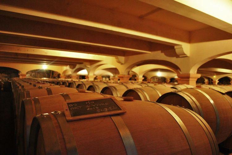 Wine Storage Room Basement Cava Illuminated In A Row Indoors  No People Wine