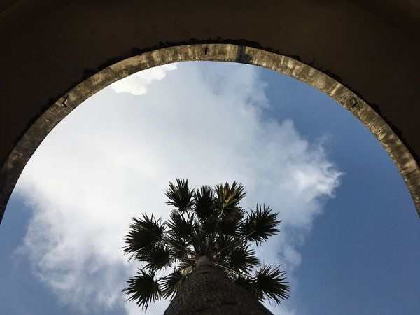 AI Now Malaysia Truly Asia Architecture Low Angle View EyeEmNewHere Cloud - Sky Photooftheday Outdoors Nature EyeEm Ready