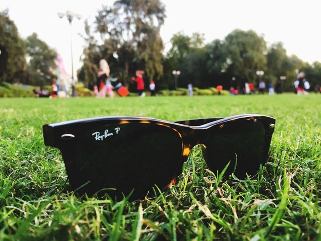 Sunglasses Ray-ban Poloroid Grass Focus On Foreground Tree Outdoors Day Nature Close-up People Sky Kids Playing