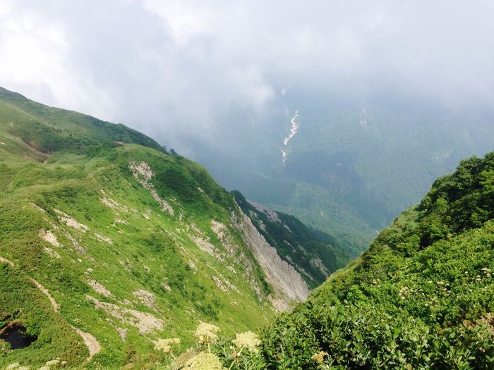 Summer Mountain View Mountain Nature EyeEm Nature Lover