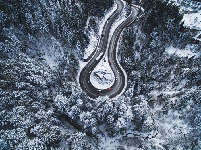Snow Tree Landscape Drone  Winter Nature Flying High