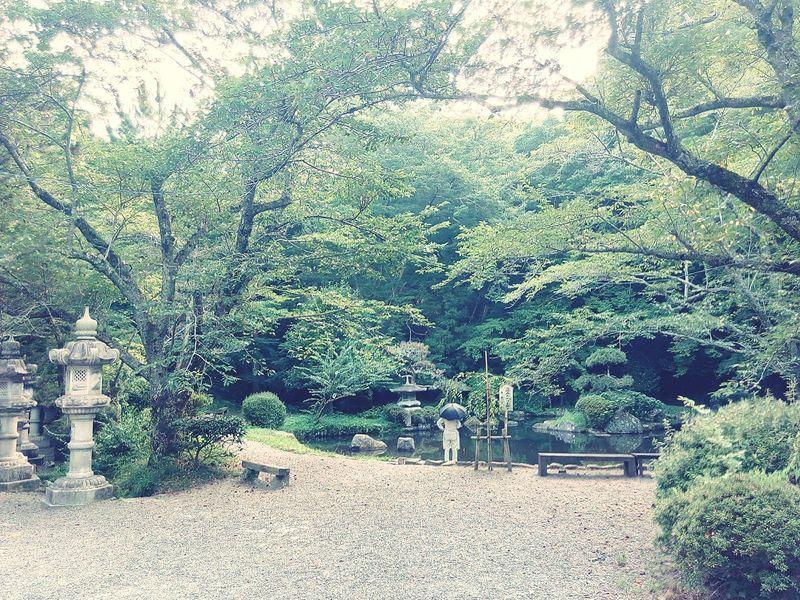 Katori Shrine Katori Jinguu Relaxing Countryside Enjoying Life Taking Photos Summer On A Holiday Tourism Japan