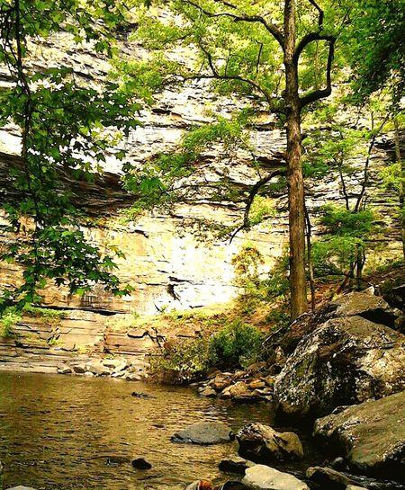 Petite Jean Arkansas EyeEm Nature Lover Trees Landscape